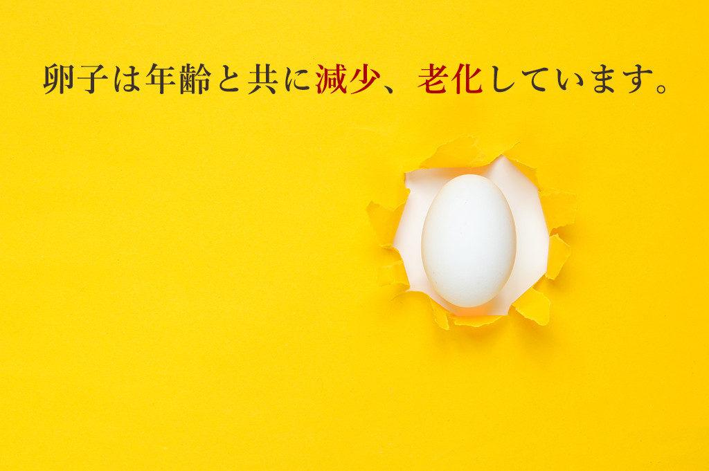 卵子は年齢と共に減少、老化しています。